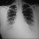 clínica de raio x em sp Feital